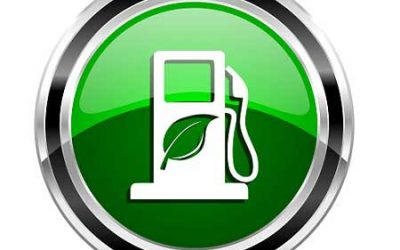 Blended fuel options in place, says govt.