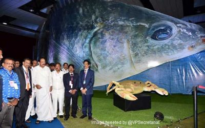 Fisheries key to sustainable food security: V-P