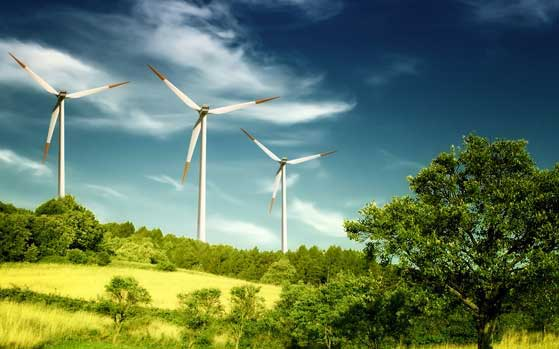 Wind power companies to get lease rent waiver