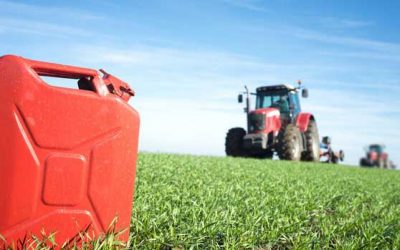 Cabinet gives nod to raise ethanol procurement prices